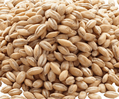 how-to-cook-hulled-barley-picture