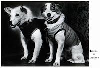 Самые знаменитые собаки в жизни и в искусстве http://handmade.parafraz.space/
