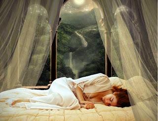 Giấc ngủ say