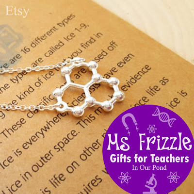 Ms Frizzle Gifts for Teachers- a gift guide from In Our Pond.  Holidays.  Christmas.  Magic School Bus.  Etsy.  Science Gifts.