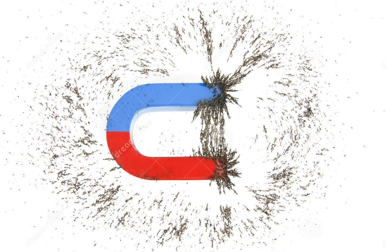 Fisica 3b Magnetismo E Campo Magnetico Generato Da Un