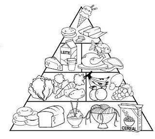 Molde pirámide de alimentación