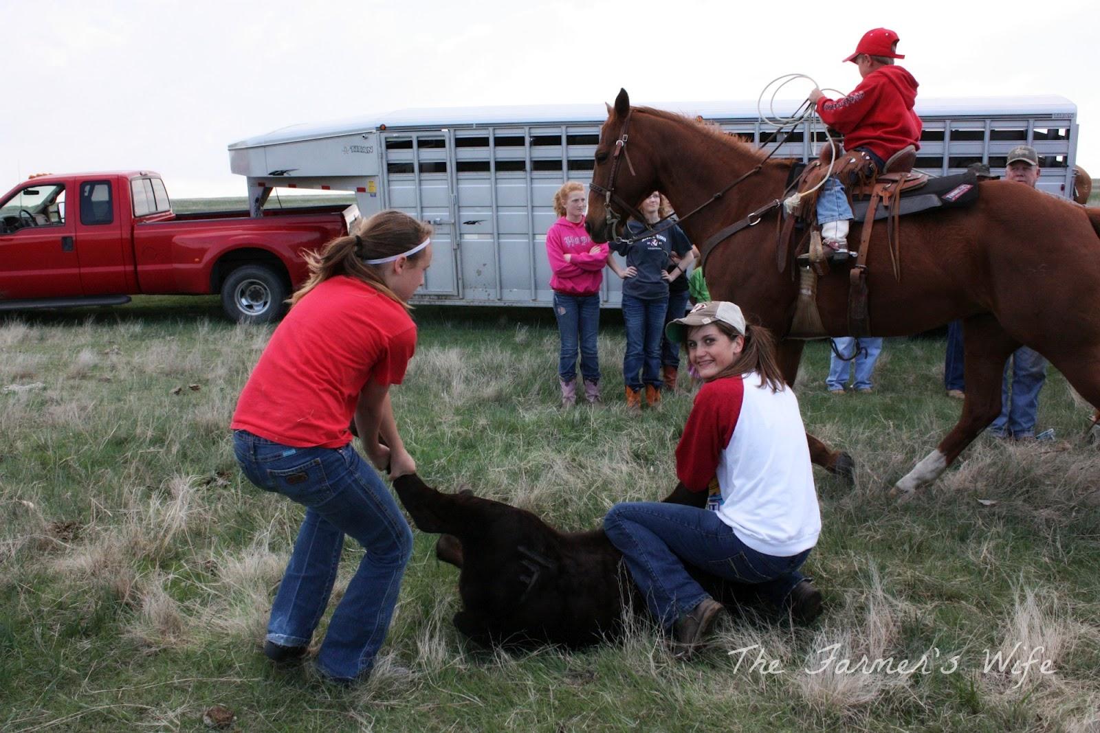 The Farmer's Wife: April 2012