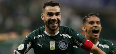Avaí x Palmeiras ao vivo na TV e online - SÓ NO PREMIERE  Como assistir