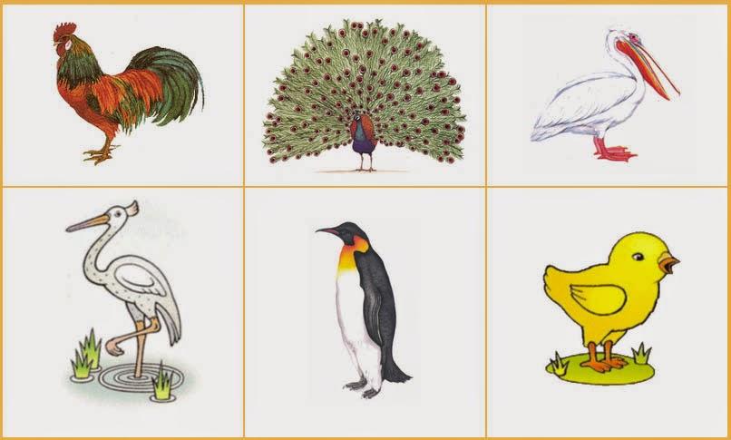 картинки и рисунки на букву п