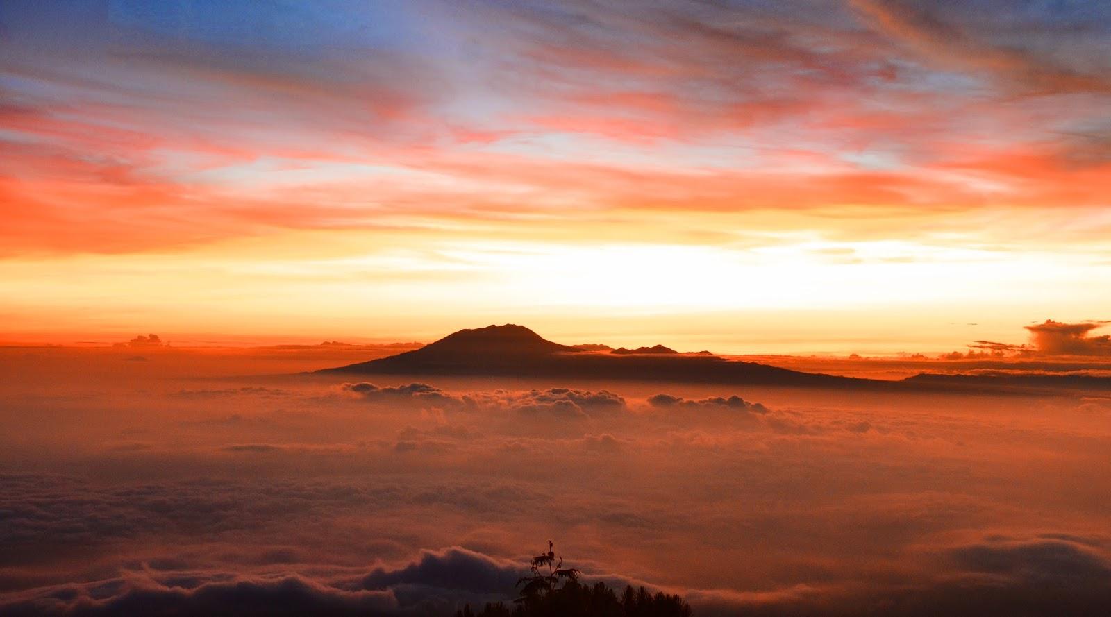 di balik gunung lawu gunung lawu erupsi terakhir gunung lawu erupsi bunga edelweis gunung lawu