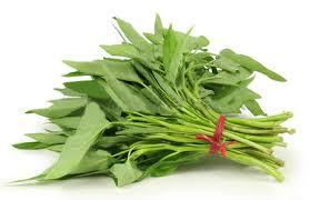 Hasil gambar untuk sayuran untuk lovebird