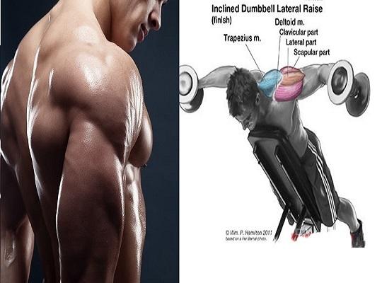 4 Killer Rear Delt Exercises For Stronger Shoulders