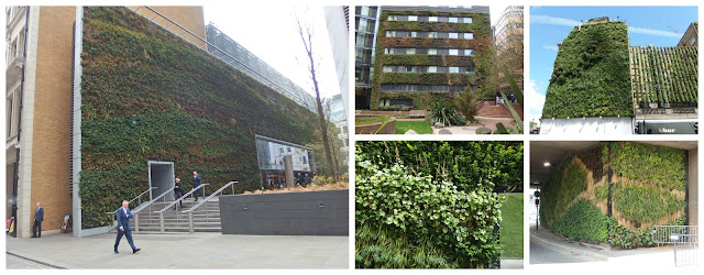 Another selection of London's green walls