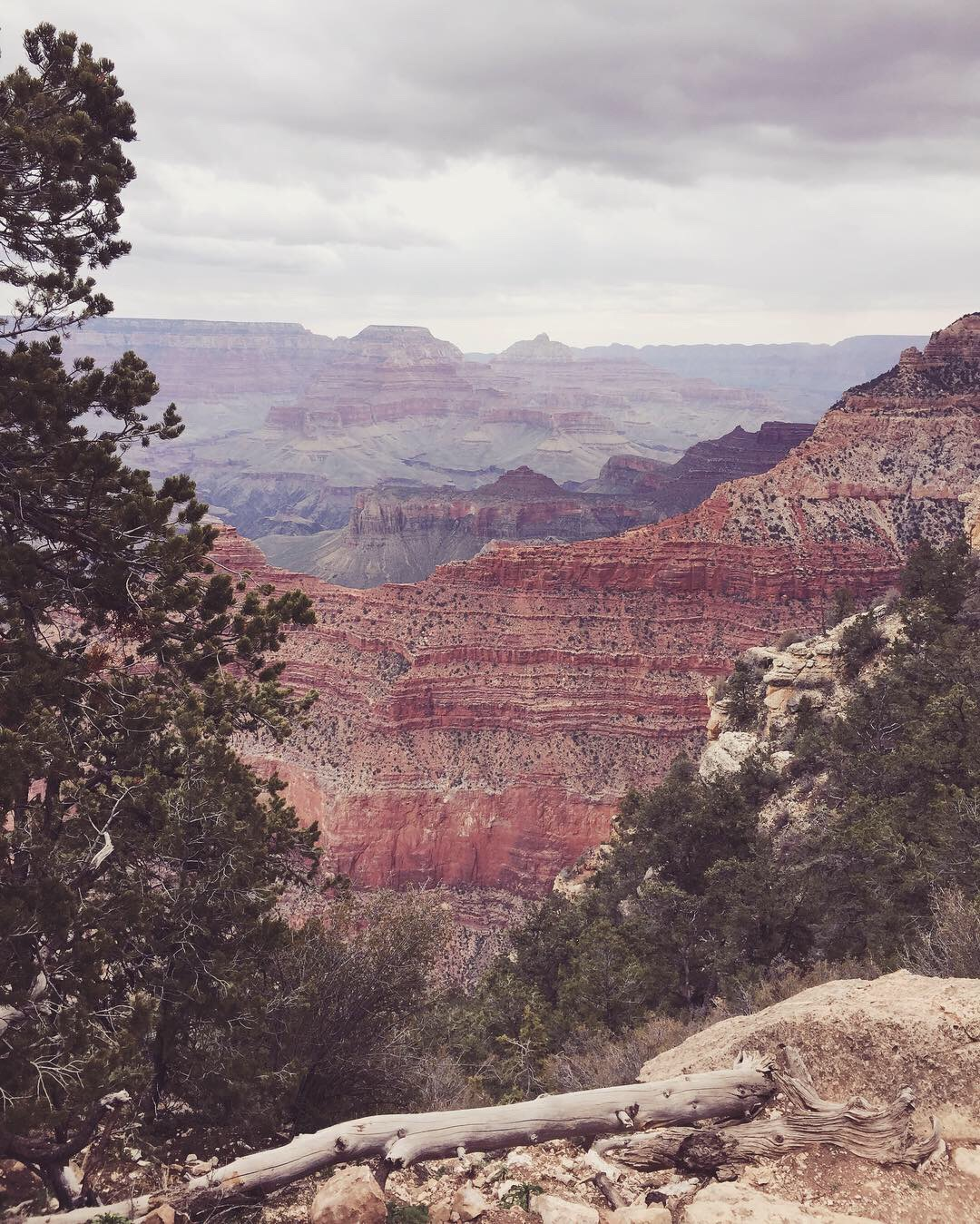 grand canyon travel diary what to know aleesha harris