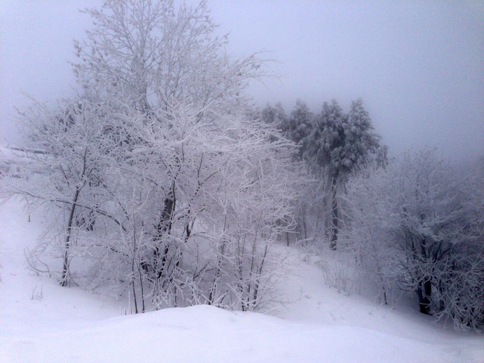 Life is Great: Winter ...