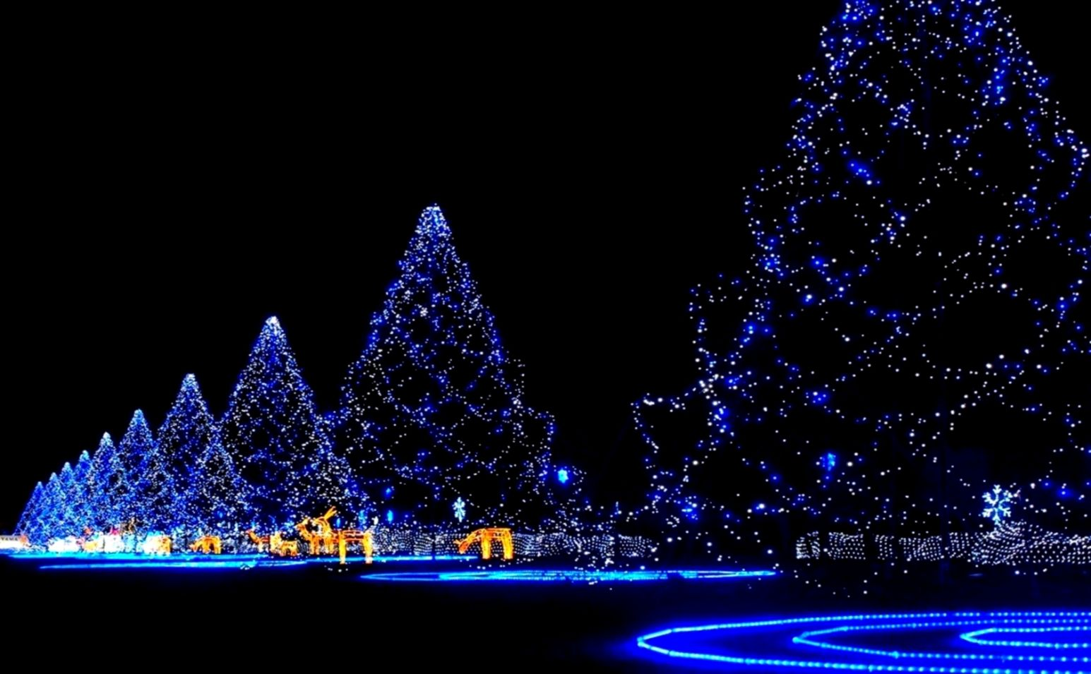 ec6b5b16913 228 Christmas Lights HD Wallpapers Background Images Wallpaper