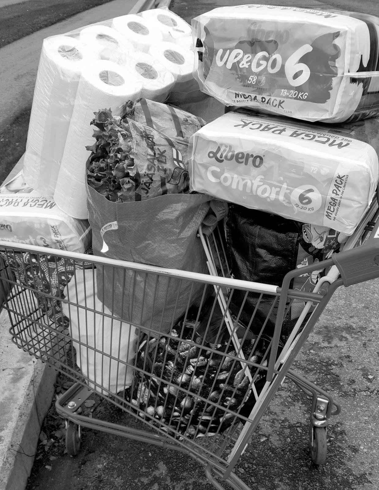 Kauppakärry täynnä 2-3 viikon ruokatarpeita!