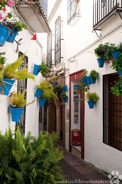 Callejón de las Flores de Córdoba