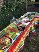Photo of a long table covered with brightly striped table cloth, containing bowls of vegan food at Sno-Valley Vegan Potluck. https://trimazing.com/