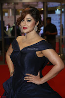 Payal Ghosh aka Harika in Dark Blue Deep Neck Sleeveless Gown at 64th Jio Filmfare Awards South 2017 ~  Exclusive 124.JPG