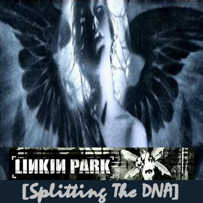 Download Linkin Park Song Album Splitting The DNA