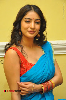 Telugu Actress Vaibhavi Stills in Blue Saree at Www.Meena Bazaar Movie Opening  0083.JPG