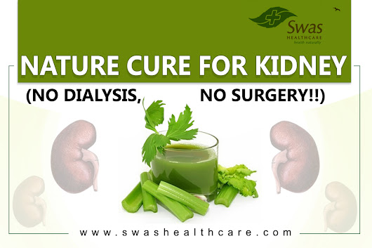 Naturopathy Treatment for Kidney in Gujarat