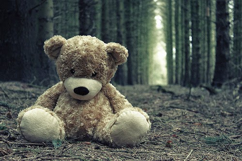 lonely lost sad teddy bear in woods .jpg
