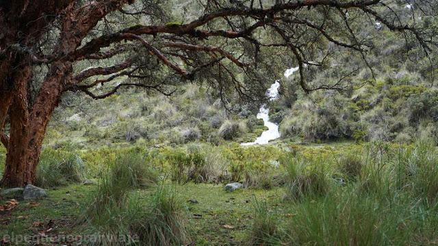 paisaje, senda, trekking, laguna 69