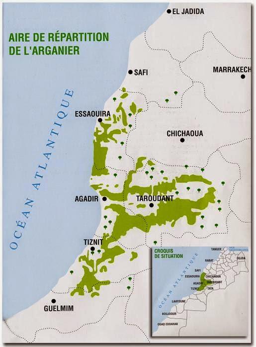 Carte des zones où pousse l'arganier au Maroc