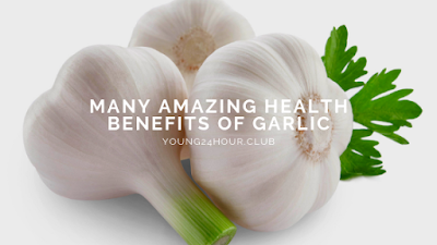 many amazing health benefits of garlic