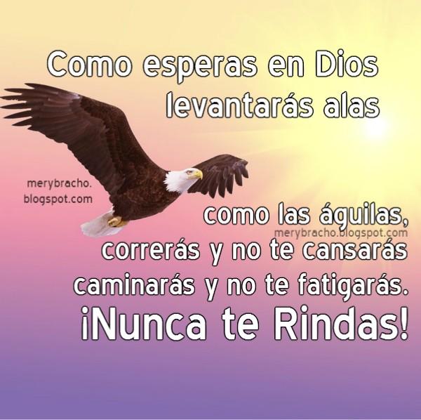 Mensaje aliento cristiano corto, poema de ánimo cristiano, esperar en Dios, levantar alas águila.