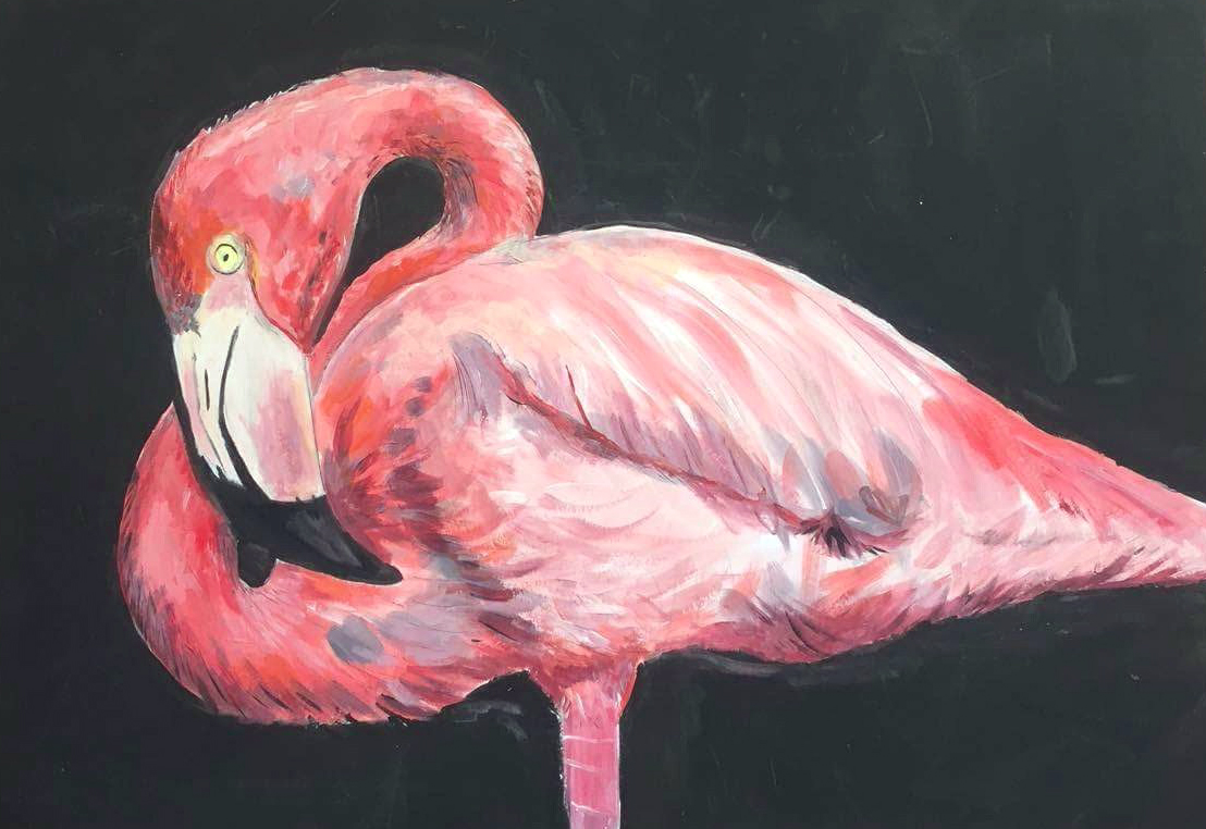 Illustrated menagerie for Flamingo feather paint