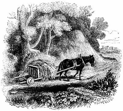 Agriculture et produits naturels