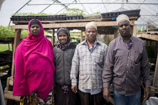 New Roots Cooperative Farm , Maine USA - founded by Somali Immigrants