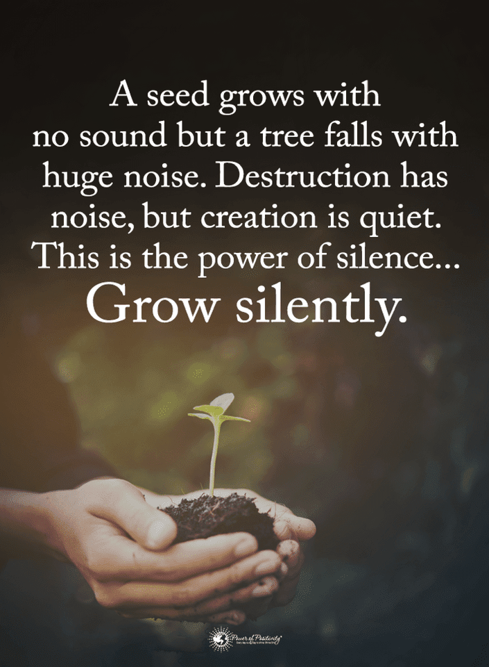 Quotes A Seed Grows With No Sound But A Tree Falls With Huge Noise