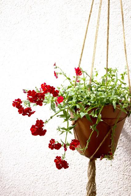 Geknüpfte Blumenampel DIY - Basteln mit Naturmaterialien