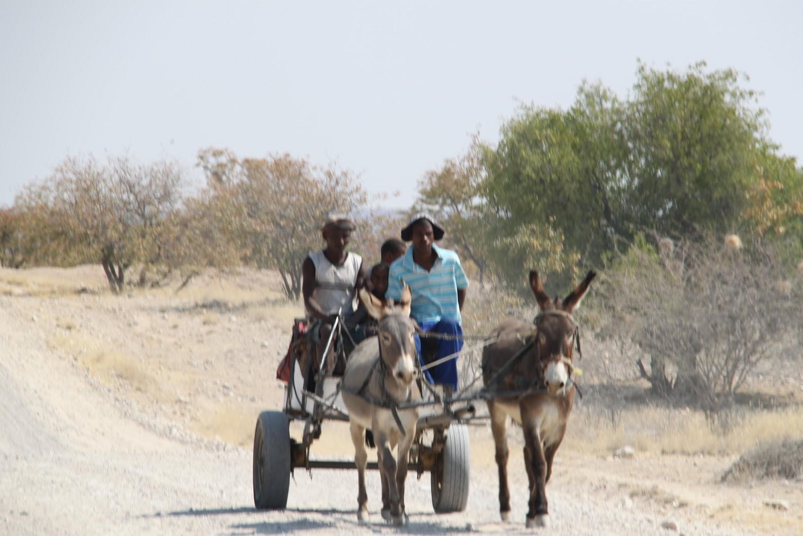 Gal Meets Globe Damaraland Namibia Mowani Mountain