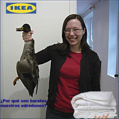 El blog del gran uribe por qu son baratos los edredones - Edredones baratos ikea ...