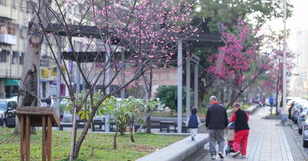 台中北區|2018台中市太原賞櫻廊道|700公尺綠園道|散步賞花|遛狗運動|休閒好去處