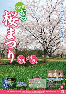 Mutsu Cherry Blossom Festival 2016 むつ桜まつり  平成28年 ポスター Sakura Matsuri poster