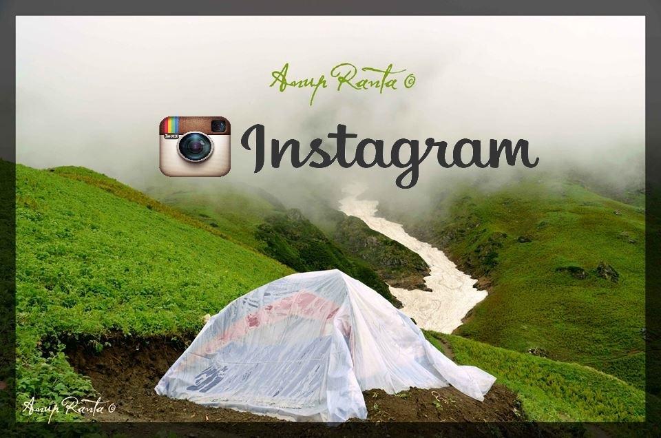Author's Instagram