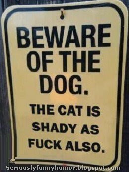 Beware of the dog. The cat is shady as fuck also!