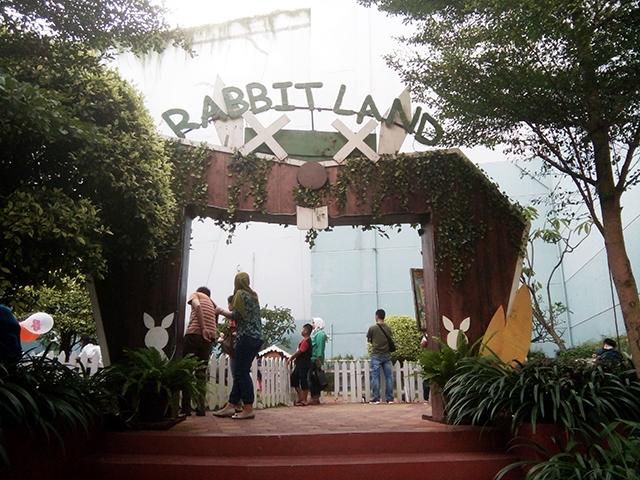 Rabbit Land [at] Gading Walk, Bermain dengan Kelinci Lucu Sampe Mules