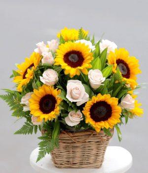 Gio hoa huong duong tang sinh nhat nguoi yeu