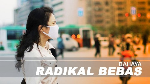 makanan-cegah-dampak-radikal-bebas
