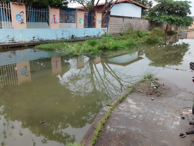 Aguas estancadas afectan la calidad de vida de habitantes del Merecure y vecinos clamaron atención gubernamental. Apure.