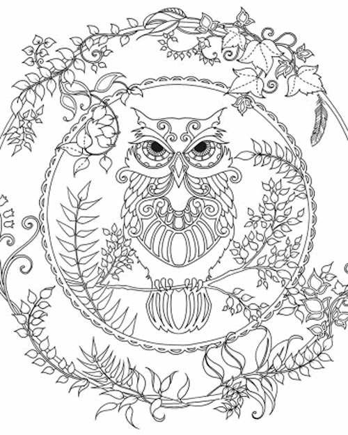 Owl Coloring Page Adult Coloring Club