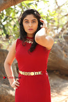 Telugu Actress Zahida Sam Latest Pos in Red Gown at RF Films New Movie Opening  0126.JPG