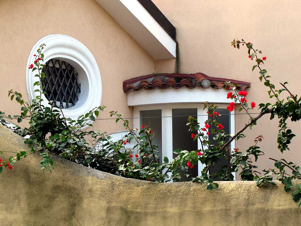 Small garden, via Sant'Jacopo in Acquaviva, Livorno