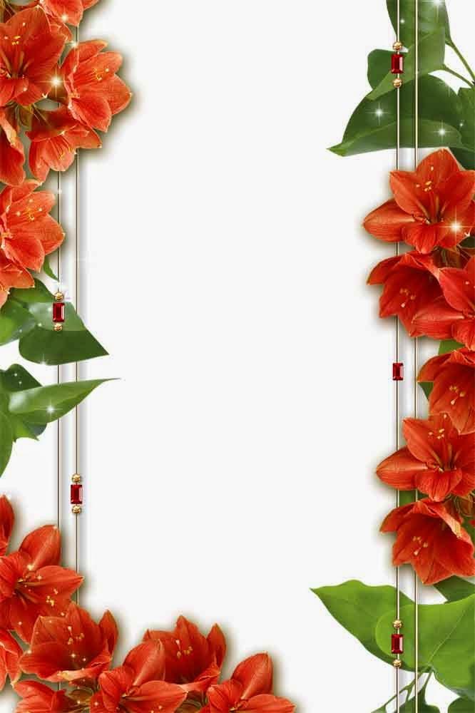 flower frame | png frame