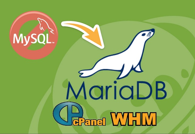 How to replace MySQL with MariaDB in cpanel - Hack The Sec