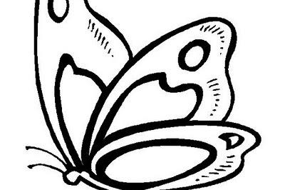 Mariposas Dibujos Animados Para Colorear