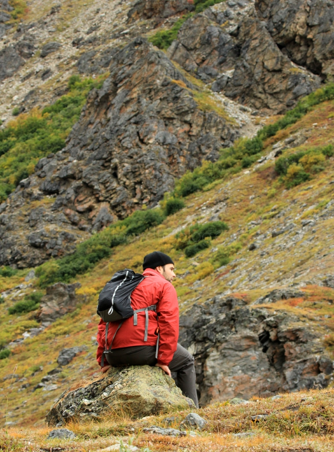 denali national park fall colors; Steve on rock
